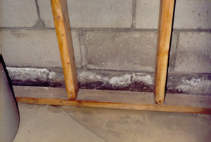 crack residue on walls